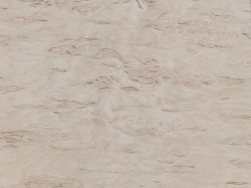 Береза песчаная